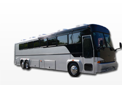 40 pass party bus rental