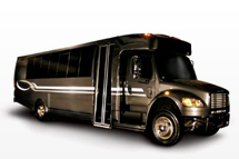 30 Pass Mini Bus Charter Service